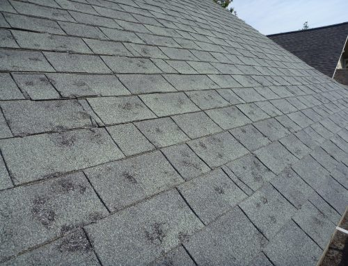 Warning Signs That Your Roof Might Be In Need Of Repair